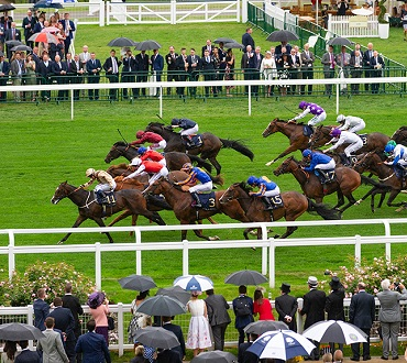 royal ascot horses racing